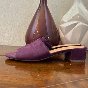 Rampage Sayda Royal Purple Suede Slides